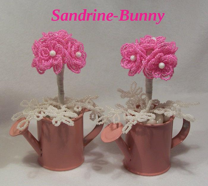 sandrine-bunny -- les plantes : les fleurs